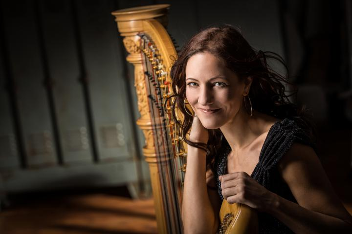 Nicole Müller | Harfe